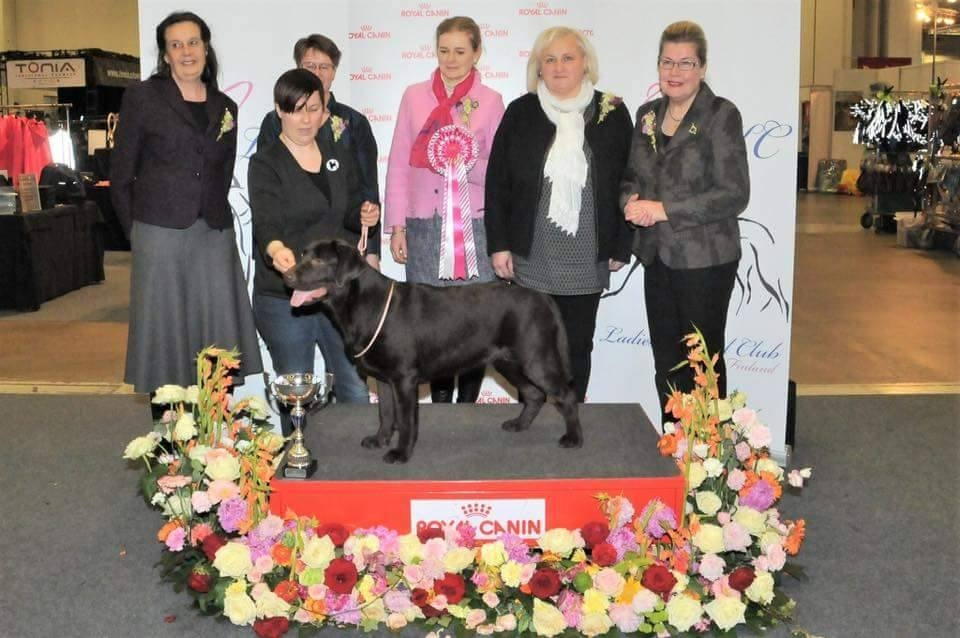 My Brand Zillion Kisses as a BEST IN SHOW Puppy on 23.4.2017