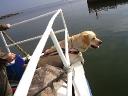 My Brand Edelweiss having a boat trip
