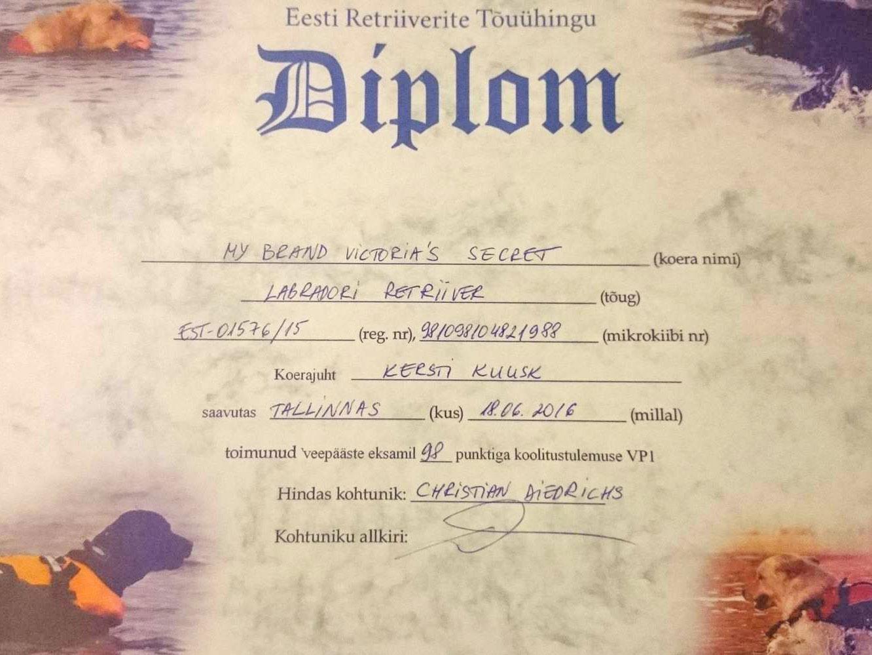 victoria-veepaaste-diplom