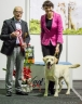 Winning the Junior BEST IN SHOW, judged by Jose Vidal Montero, Spain. Photo by Siim Kinnas, thank you!
