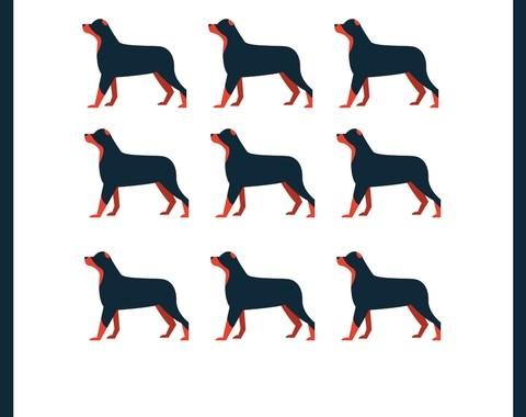 Gerard O'Shea Dog Management (flaier 1)